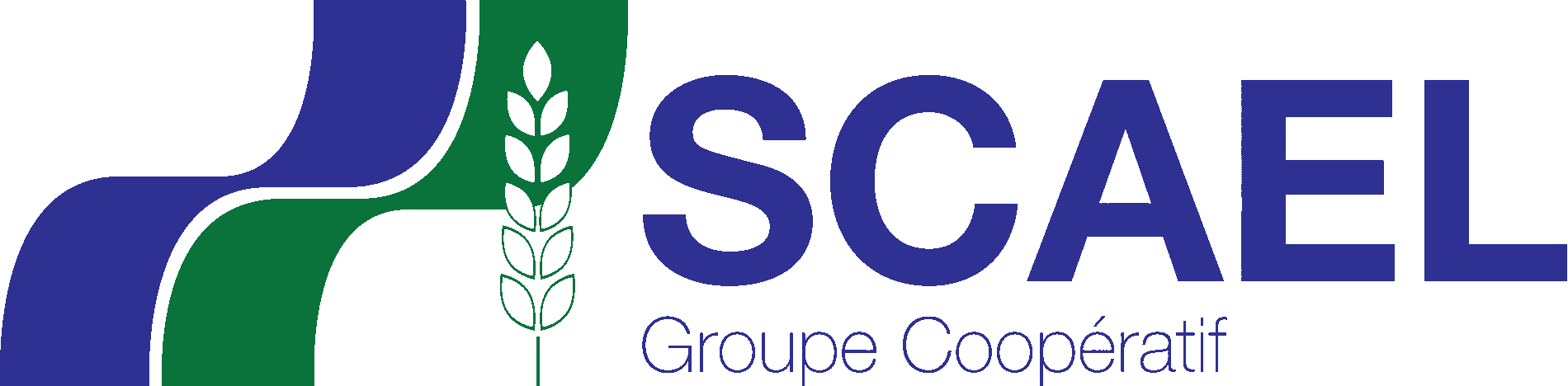 MG Consultants Référence - Scael